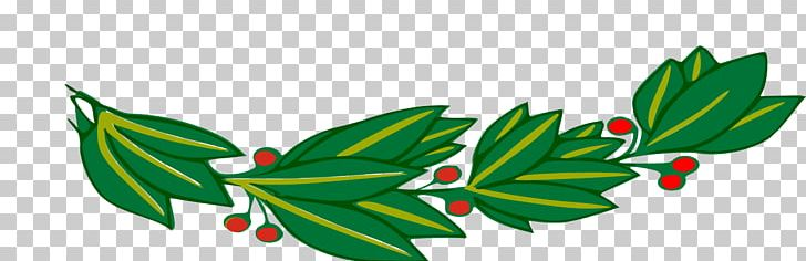 Branch Bay Laurel Laurel Wreath PNG, Clipart, Bay Laurel, Branch, Computer Icons, Download, Flowering Plant Free PNG Download