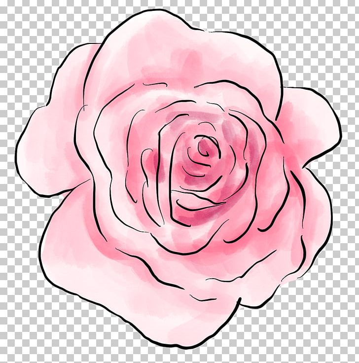 Garden Roses Centifolia Roses Floral Design Cut Flowers PNG, Clipart, Art, Centifolia Roses, Cut Flowers, Floral Design, Flower Free PNG Download