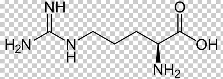 Arginine Citrulline Amino Acid Structure PNG, Clipart, Acid, Amino Acid, Angle, Area, Arginine Free PNG Download
