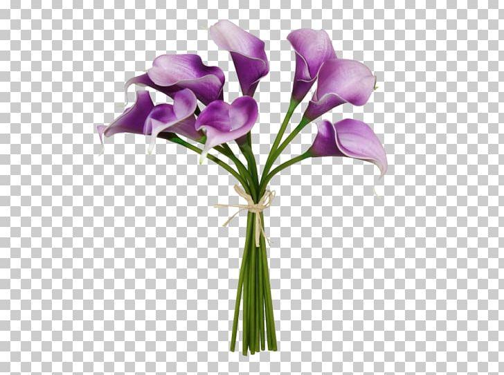 Cut Flowers Floral Design Floristry Flower Bouquet PNG, Clipart, Callalily, Cut Flowers, Floral Design, Floristry, Flower Free PNG Download