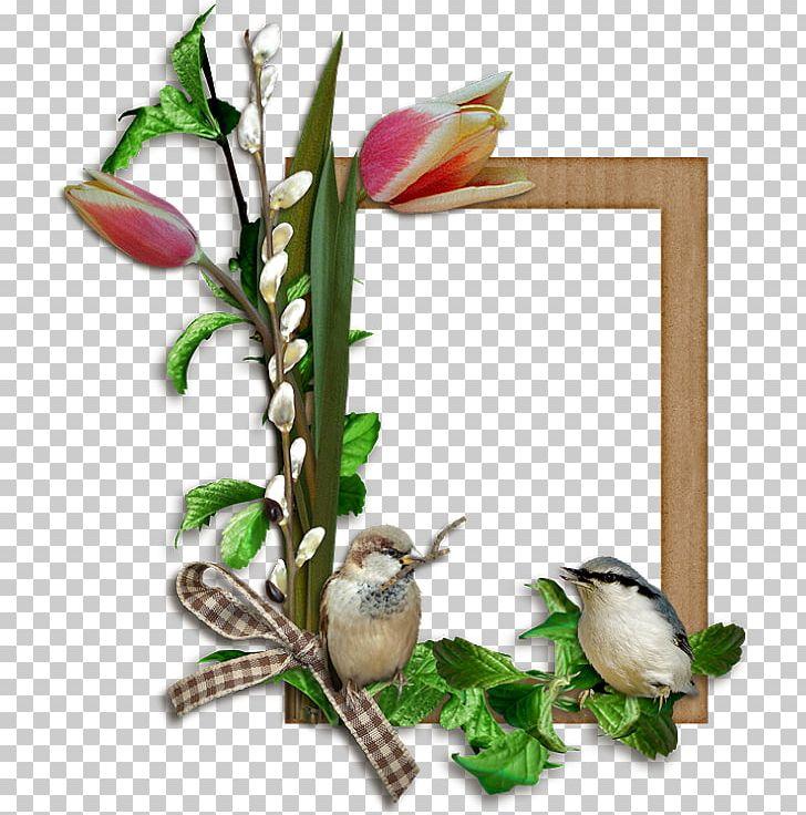 Frames Bird Easter PNG, Clipart, Animals, Bird, Bird Supply, Branch, Cut Flowers Free PNG Download