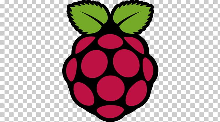 Raspberry Pi Installation Logo Embedded System CentOS PNG, Clipart, Adafruit Industries, Centos, Computer Software, Do It Yourself, Embedded Software Free PNG Download