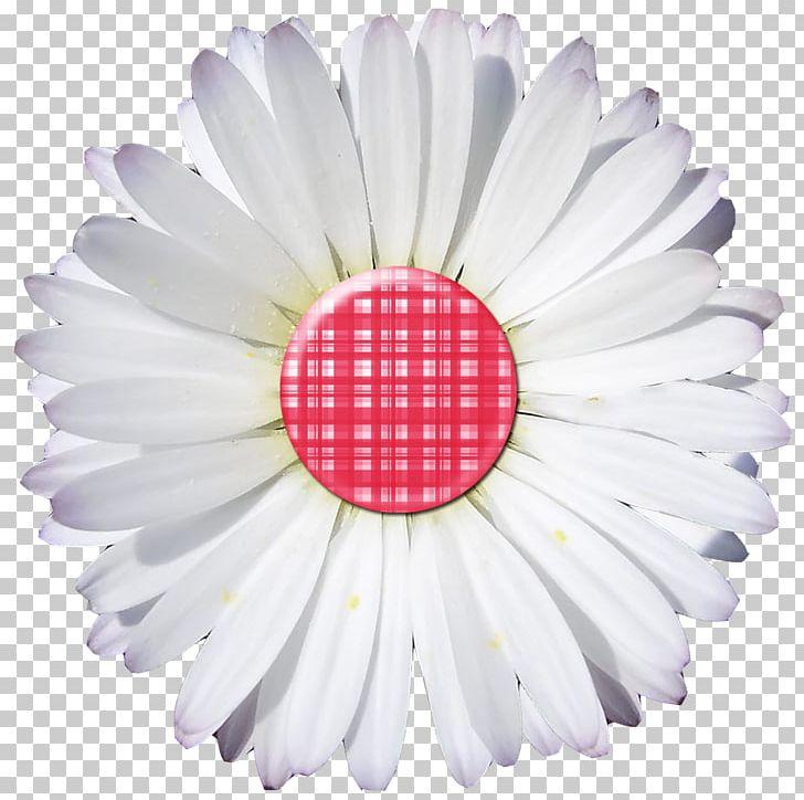 Paper Digital Scrapbooking Embellishment PNG, Clipart, Alphabet, Art, Button, Craft, Cut Flowers Free PNG Download