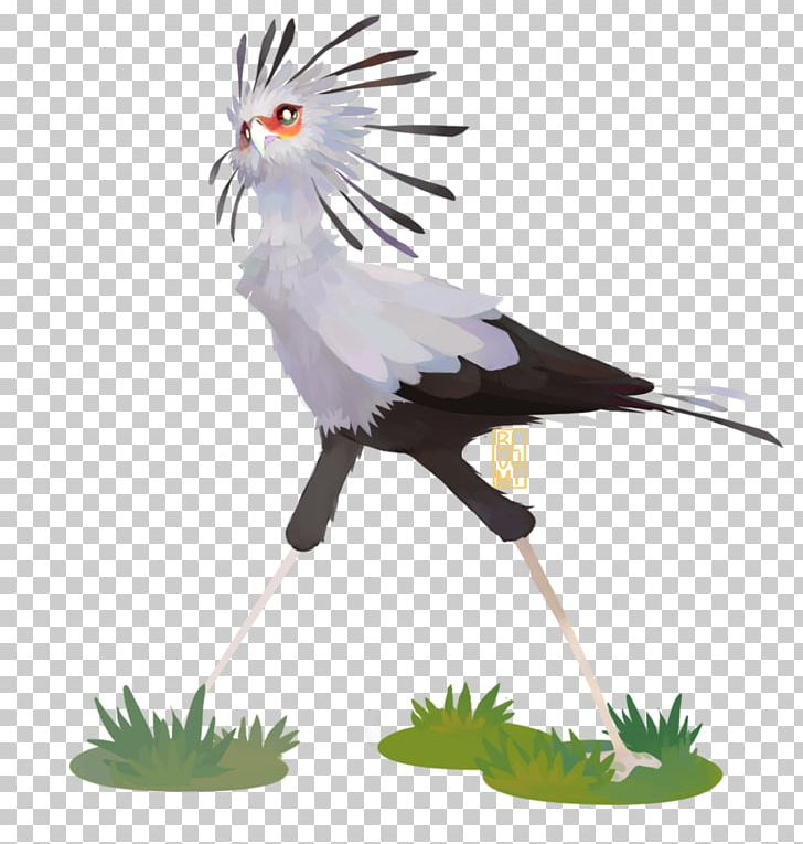 Secretarybird Vulture Crane PNG, Clipart, Administrative Professionals Day, Animal, Animals, Art, Beak Free PNG Download