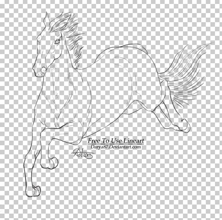 Horse Line Art Sketch PNG, Clipart, Animals, Arm, Art, Artist, Artwork Free PNG Download