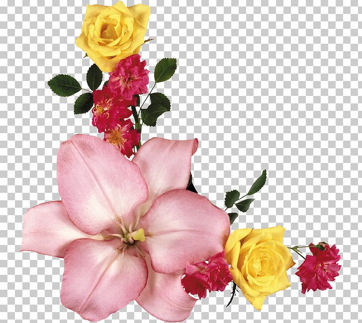 Flower Portable Network Graphics Garden Roses Adobe Photoshop PNG
