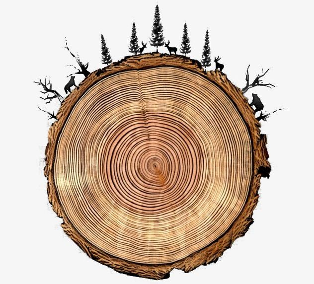 Tree Rings Round Tree Animals PNG, Clipart, Animal, Animals Clipart