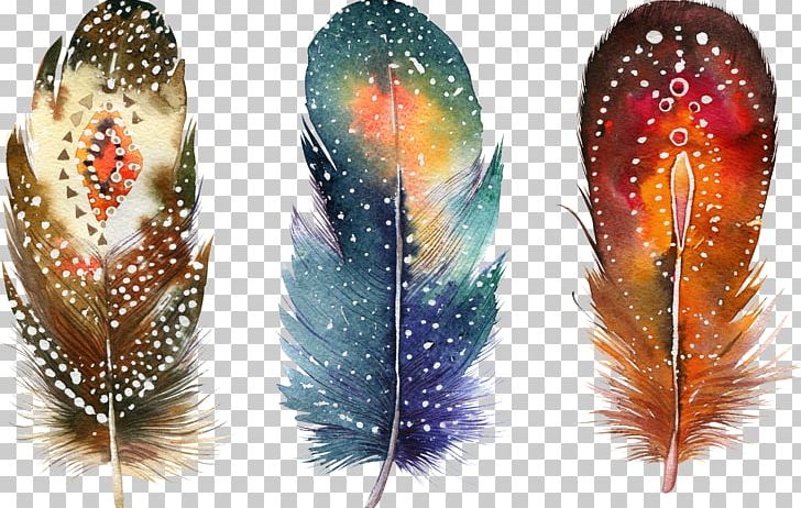 Watercolor Painting Feather Drawing Poster PNG, Clipart, Animal, Animals, Art, Beautiful, Beautiful Animal Feathers Free PNG Download
