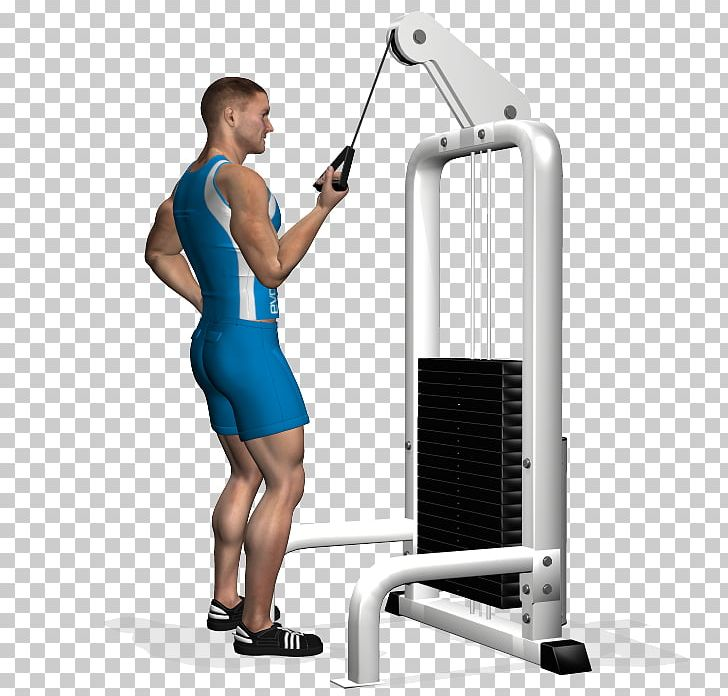 Cable Lying Triceps Extension