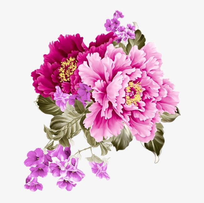 Flowers PNG, Clipart, Arrangement, Backgrounds, Beauty In Nature, Blossom, Botany Free PNG Download