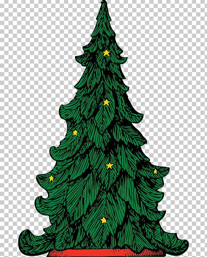 Christmas Trees Png.Christmas Tree Png Clipart Christmas Christmas Decoration
