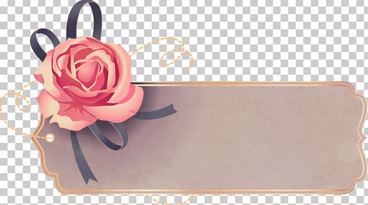 Icon PNG, Clipart, Beach Rose, Cartoon, Computer Graphics, Computer Icons, Encapsulated Postscript Free PNG Download