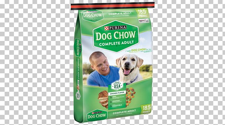 Chow Chow Puppy Dog Chow Dog Food Nestlé Purina PetCare