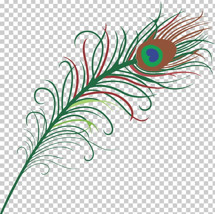 Bird Feather Peafowl PNG, Clipart, Bird, Circle, Drawing, Feather, Flora Free PNG Download