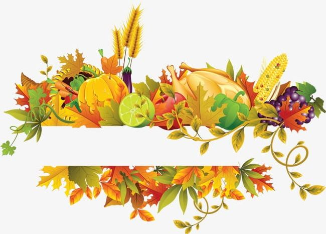 autumn flowers png fall flowers fruit border png, clipart, autumn, border