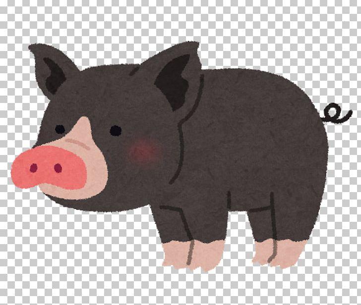 Tokyo X Berkshire Pig かごしま黒豚 Pork Menchi Katsu Png