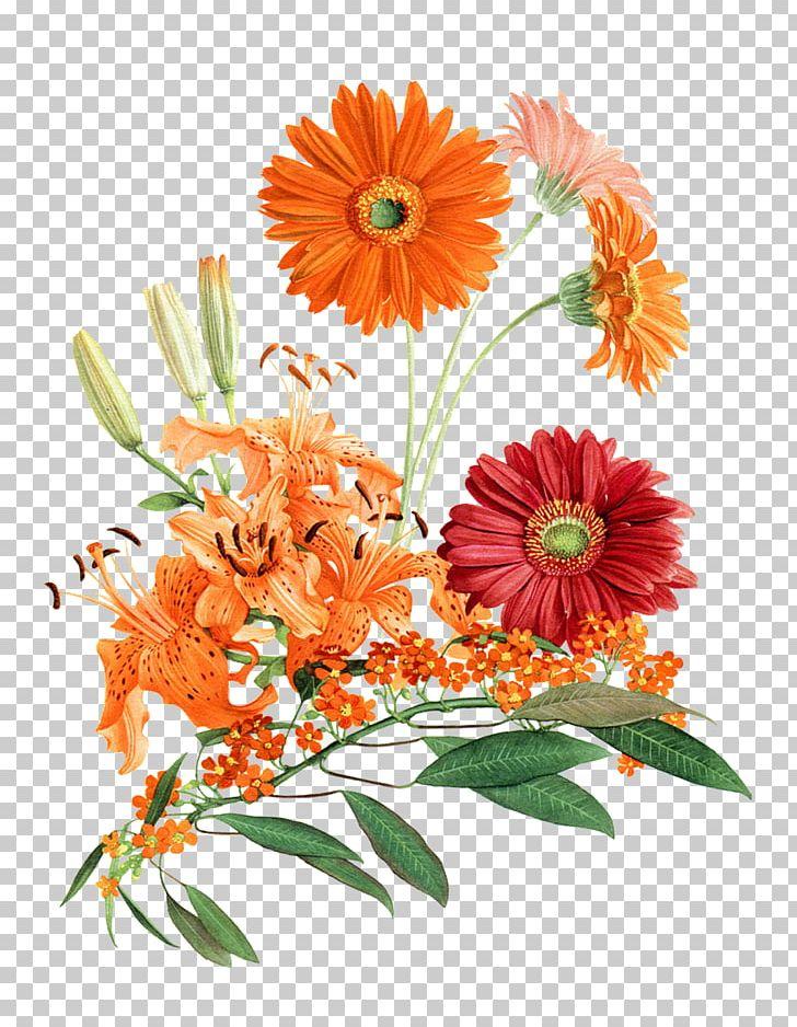 Cut Flowers Floral Design Floristry Plant PNG, Clipart, Botanical, Botany, Bra, Calendula, Chrysanthemum Free PNG Download