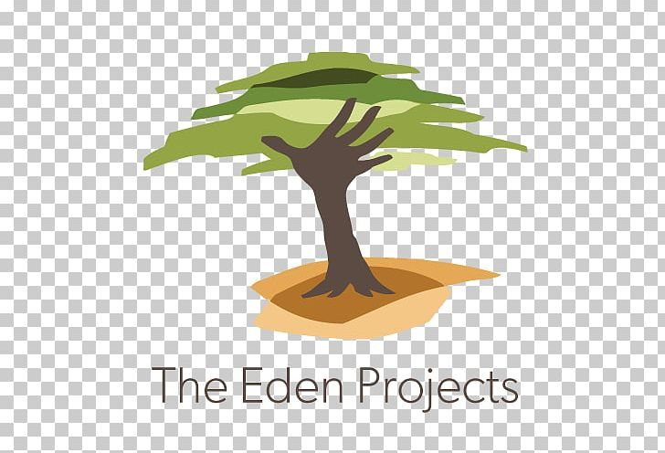 Non Profit Art Projects