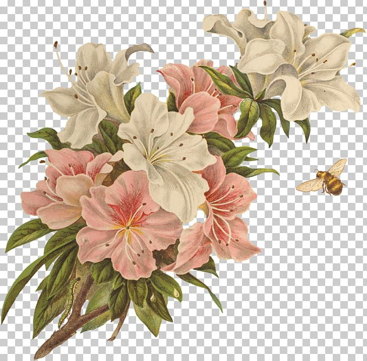 Floral Design PNG, Clipart, Alstroemeriaceae, Art, Blossom, Branch, Calligraphy Free PNG Download