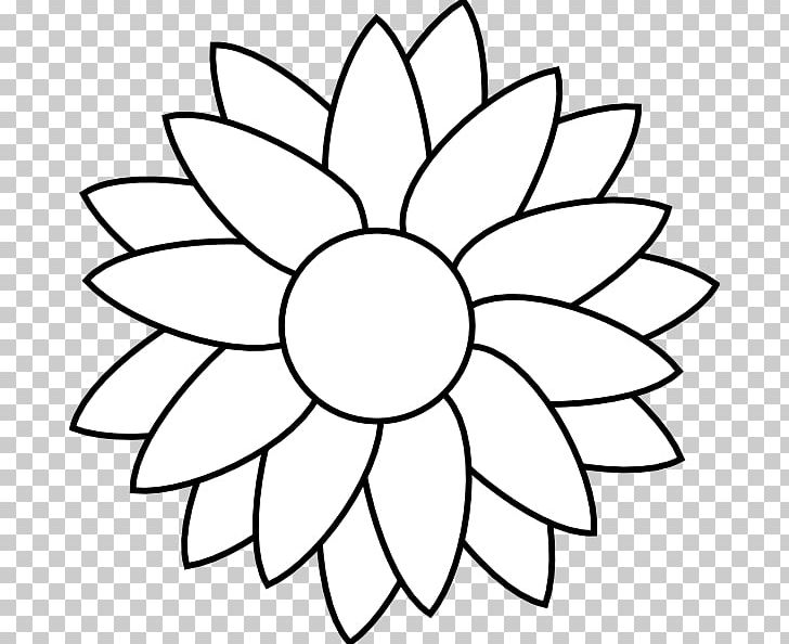 Flower black and white sunflower. Common free content png