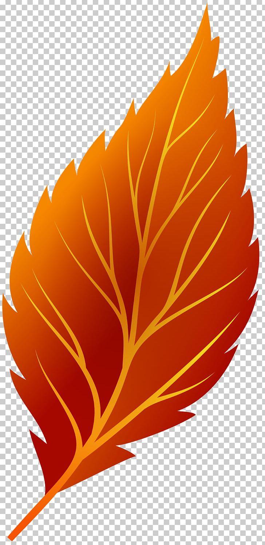 Autumn Leaf Color Autumn Leaf Color PNG, Clipart, Autumn, Autumn Leaf Color, Autumn Leaves, Computer Icons, Computer Wallpaper Free PNG Download
