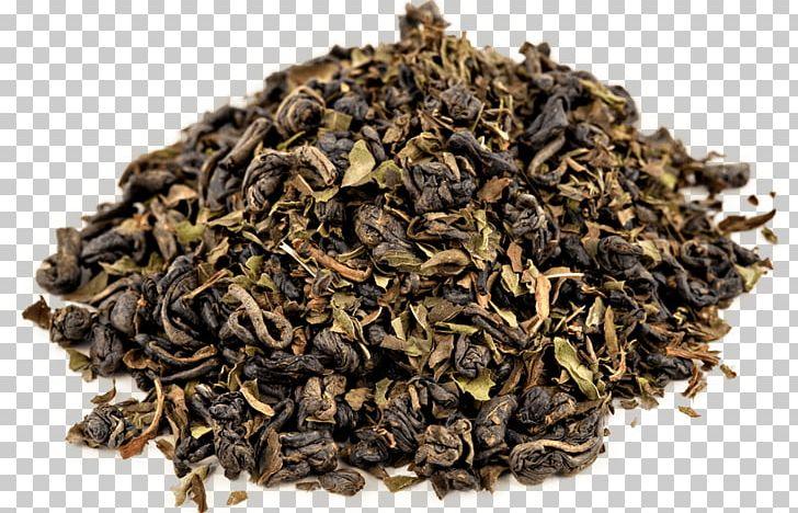Maghrebi Mint Tea Green Tea Oolong Gunpowder Tea PNG, Clipart, Assam Tea, Bancha, Biluochun, Black Tea, Ceylon Tea Free PNG Download