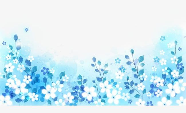 White Flowers On A Blue Background To Pull Material Free Png
