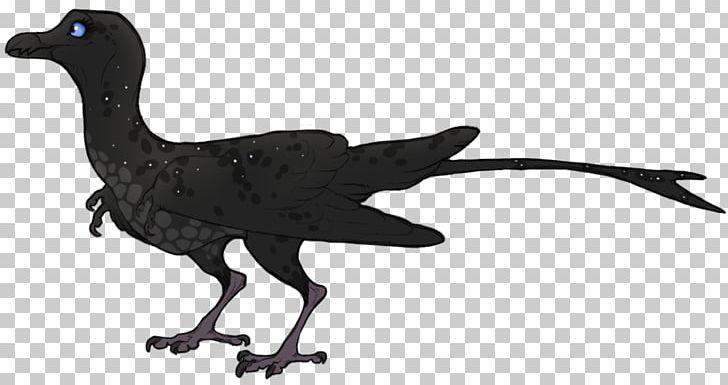 Galliformes Velociraptor Bird Fauna Beak PNG, Clipart, Animal, Animal Figure, Animals, Beak, Bird Free PNG Download