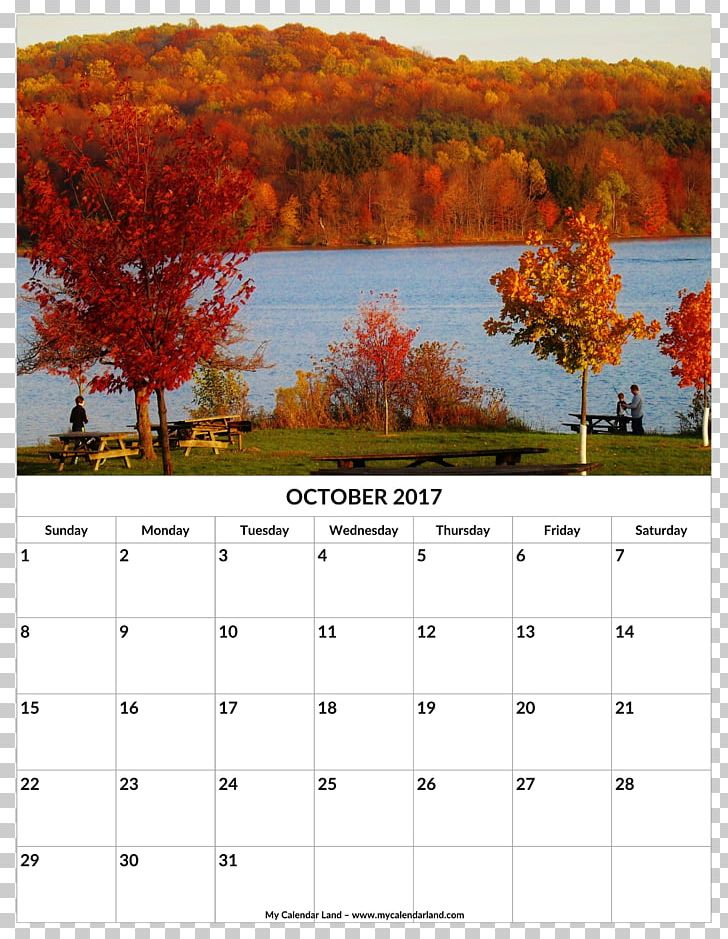 Cherry Springs State Park Front Royal Dorney Park & Wildwater Kingdom National Park PNG, Clipart, Accommodation, Calendar, Dorney Park Wildwater Kingdom, Forest, Front Royal Free PNG Download