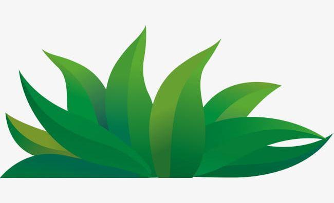 Grass cartoon. Green png clipart dig