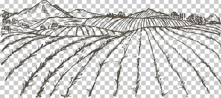 Agriculture Farmer Drawing PNG, Clipart, Angle, Artwork, Black And White, Branch, Crop Free PNG Download