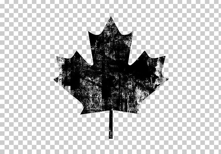 Flag Of Canada Maple Leaf PNG, Clipart, Background, Black And White, Canada, Canada Day, Coat Of Arms Of Ontario Free PNG Download