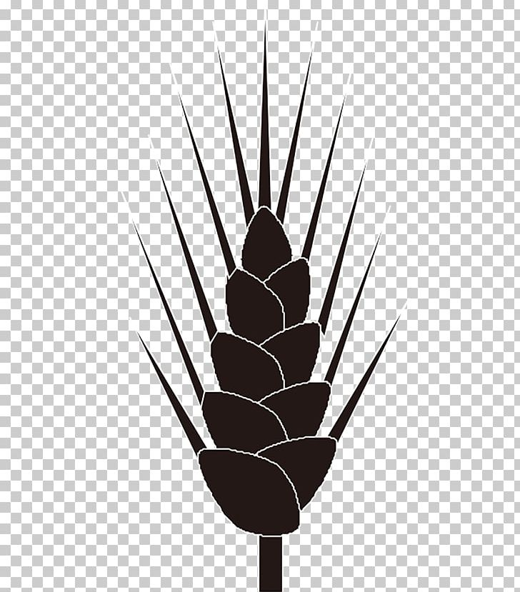 Rice Cereal Wheat PNG, Clipart, Cartoon Wheat, Cereal