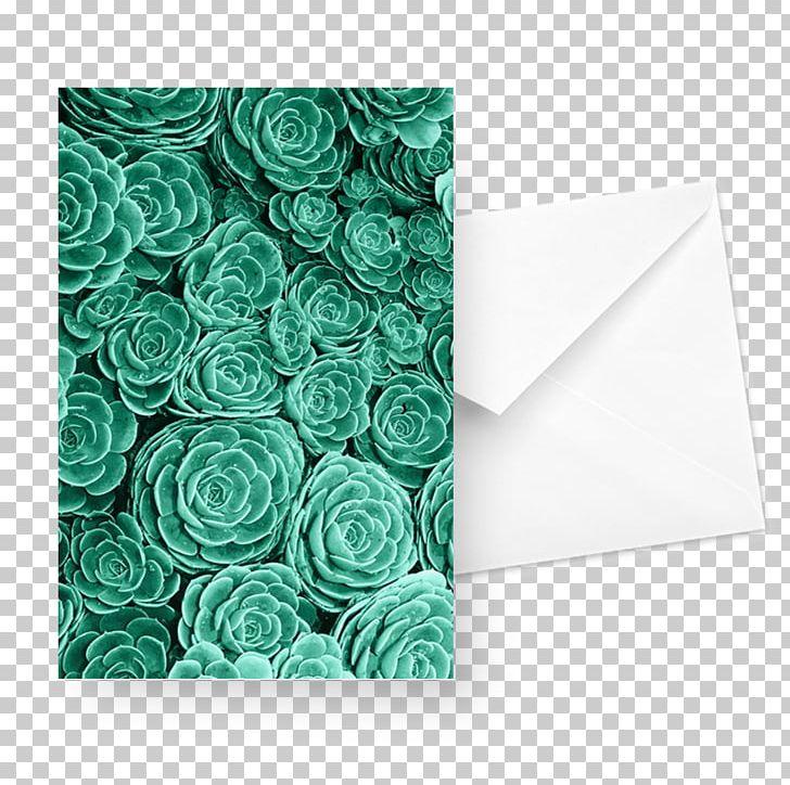 Desktop Succulent Plant Lock Screen Png Clipart Aesthetics