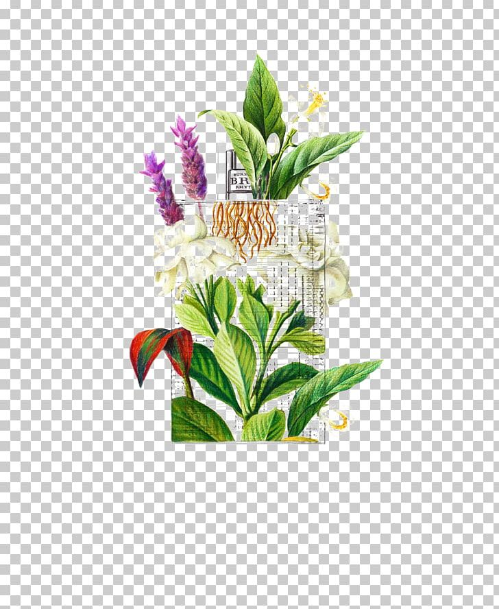 Drawing Watercolor Painting Art Illustration PNG, Clipart, Creative, Cut Flowers, Digital Art, Digital Illustration, Draw Free PNG Download