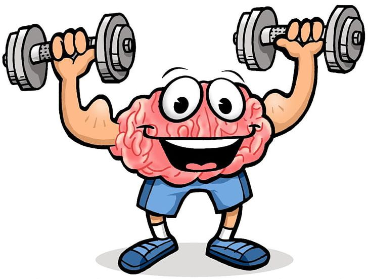 Physical Exercise Brain Cognitive Training Physical Fitness PNG, Clipart, Aerobic Exercise, Aerobics, Area, Arm, Artwork Free PNG Download