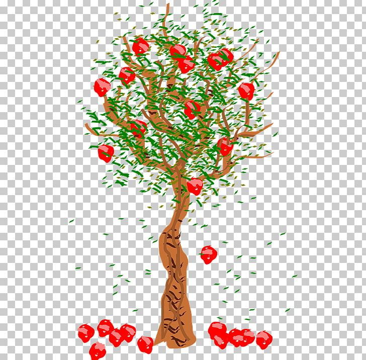Apple Fruit Tree PNG, Clipart, Apple, Art, Branch, Cherry, Christmas Decoration Free PNG Download