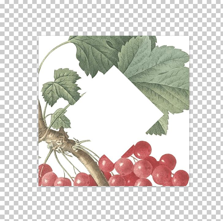 Wedding Convite Redcurrant Number PNG, Clipart, Berry, Blog