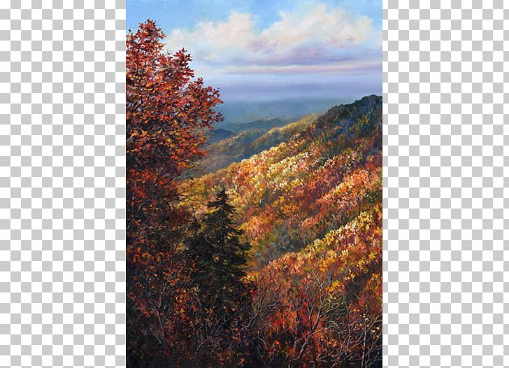 Temperate Broadleaf And Mixed Forest Mount Scenery Autumn Biome PNG, Clipart, Autumn, Biome, Deciduous, Ecosystem, Escarpment Free PNG Download
