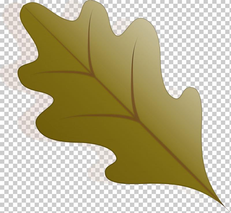 Autumn Leaf Autumn Color PNG, Clipart, Autumn, Autumn Color, Autumn Leaf, Autumn Leaf Color, Branch Free PNG Download