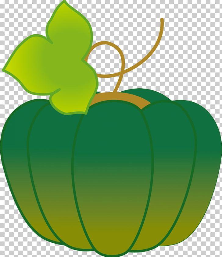 Cucurbita Kabocha Child Care Jardin D'enfants Pumpkin PNG, Clipart,  Free PNG Download