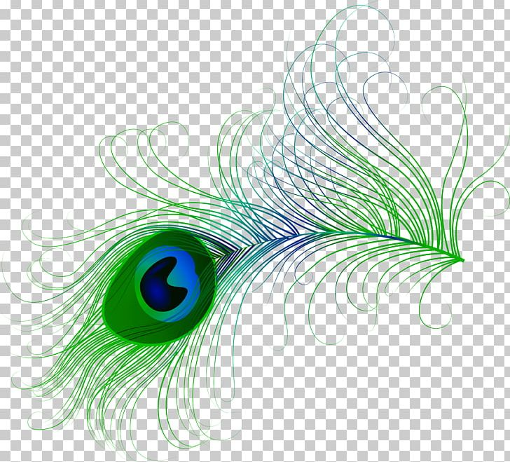 Bird Feather Peafowl PNG, Clipart, Animal, Animals, Aqua, Asiatic Peafowl, Bird Free PNG Download