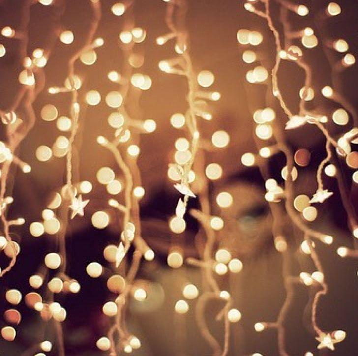 Christmas Fairy Lights Png.Christmas Lights Desktop Lighting Png Clipart Branch