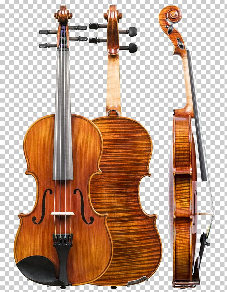 Violin Family Cello Musical Instruments Double Bass Png