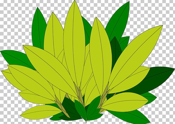 Autumn Leaf Color Tree Desktop PNG, Clipart, Autumn, Autumn Leaf Color, Branch, Computer Icons, Desktop Wallpaper Free PNG Download