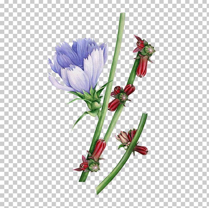 Watercolor: Flowers Watercolor Painting Floral Design PNG, Clipart, Art, Color, Cut Flowers, Downloads, Flora Free PNG Download