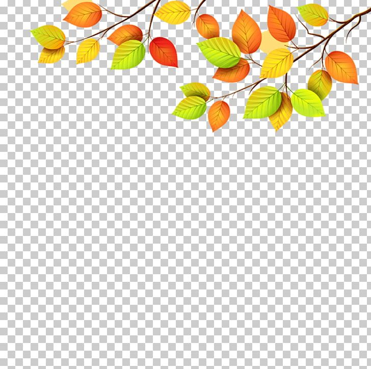 Autumn Leaf Color Green PNG, Clipart, Autumn, Autumn Leaf Color, Border, Branch, Bullet Journal Free PNG Download