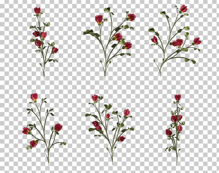 Cut Flowers Floral Design Floristry Petal PNG, Clipart, Art, Blossom, Blue, Branch, Cut Flowers Free PNG Download