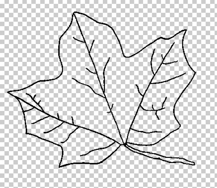 Coloring Book Autumn Leaf Color Page PNG, Clipart, Adult, Angle, Area, Art, Autumn Free PNG Download