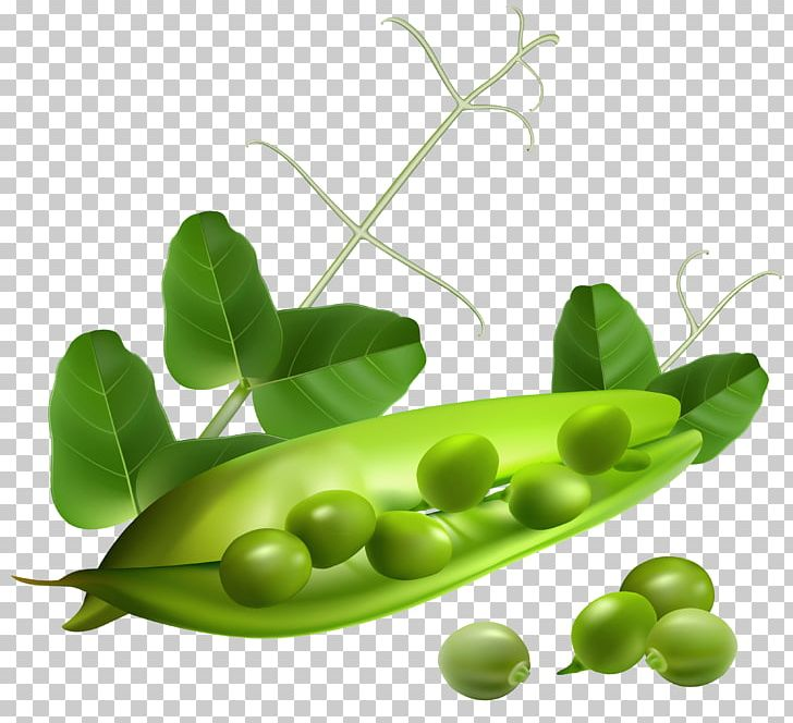 Pea PNG, Clipart, Alternative Medicine, A Pea In The Pod, Computer Icons, Food, Free Free PNG Download